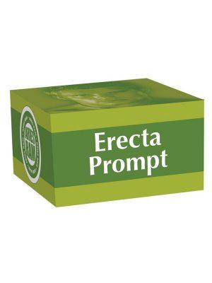 Erecta Prompt