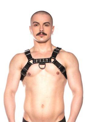 Prowler-Black-Bull-Harness