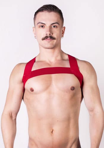 Prowler Red Sports Harness Front